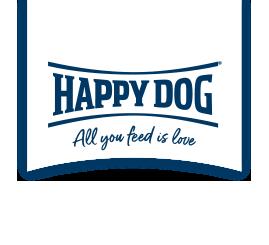 Dog Fun Day